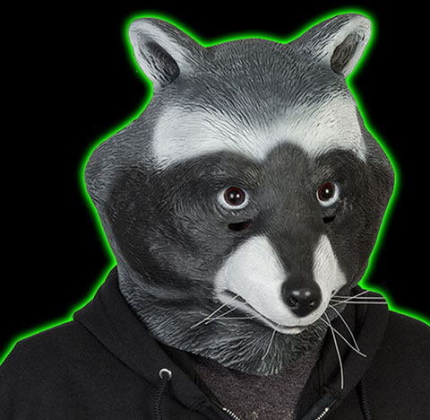 Halloweentown Store: CLEARANCE!Raccoon Mask WAS:$39 99, NOW